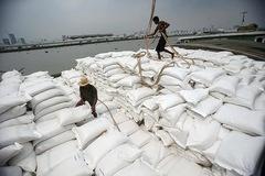 Việt Nam có thể vượt Thái Lan về xuất khẩu gạo