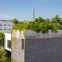 """<p> Kiến trúc sư Võ Trọng Nghĩa đã thiết kế những ngôi nhà mang màu sắc gần gũi với thiên nhiên trong môi trường đô thị dày đặc. """"Thang House"""" là một ngôi nhà như thế, khi nóc nhà được ưu tiên trồng nhiều loại cây ăn trái khác nhau.</p>"""