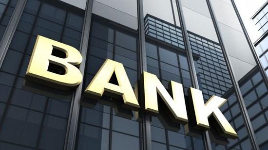 Các TCTD EU có thể nắm 49% vốn tại 2 ngân hàng Việt Nam