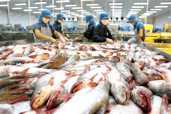 Nông sản Việt lo đáp ứng rào cản kỹ thuật tại EU
