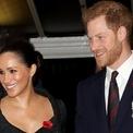 <p> Bên cạnh đó, vợ chồng Hoàng tử Harry còn tích cực ủng hộ từ thiện bằng tiền cá nhân. Tháng 9/2019, họ đã quyên góp 5.000 USD xây dựng bể bơi cho người dân địa phương ở vịnh Guinjata, Mozambique. Họ còn có rất nhiều chuyến đi từ thiện đến châu Phi trong các năm qua. Ảnh: <em>Getty.</em></p>