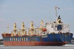 Vinalines sẽ thoái vốn 13 đơn vị thành viên trong năm 2020