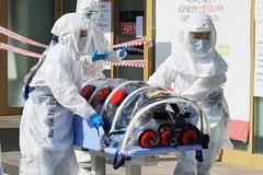 Hàn Quốc có 433 ca nhiễm virus corona, tăng 8 lần trong 4 ngày