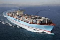 Vận tải biển ngưng trệ vì virus corona
