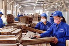TTF bán hơn 99% vốn Lâm nghiệp Trường Thành