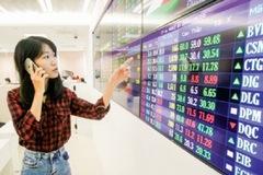 Cổ phiếu ngành giấy vững vàng giữa bão dịch