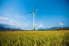 Ninh Thuận có gần 4.400 ha được quy hoạch là đất năng lượng