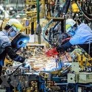 Tổ chức tổng điều tra kinh tế 2021