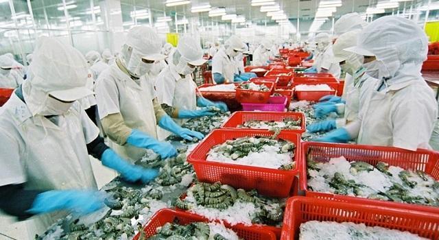 Xuất khẩu hải sản Việt Nam sang EU giảm sút vì 'thẻ vàng'