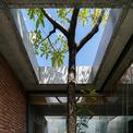 <p> Cây xanh được bố trí trong từng ngóc ngách có thể trong và ngoài nhà, nhằm giảm bức xạ nhiệt, lọc không khí và tạo nên cảm giác thư thái.</p>