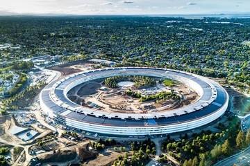 'Sau thực tập ở Google, tôi bỏ chạy khỏi Thung lũng Silicon'