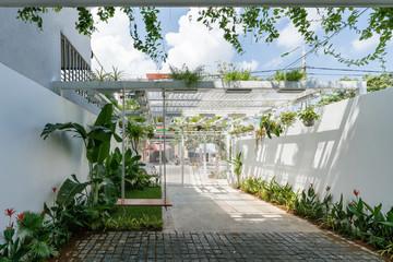 Ngôi nhà của cặp vợ chồng 'yêu thiên nhiên, yêu cây cỏ, yêu nhau' ở Đà Nẵng