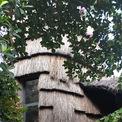 <p> Lồng cầu thang là điểm nhấn cho toàn bộ ngôi nhà, gợi hình ảnh đụn rơm đã ăn sâu vào tiềm thức gia chủ.</p>