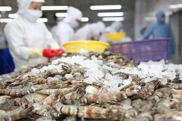 Minh Phú rót thêm 380 tỷ đồng vào Minh Phú Kiên Giang