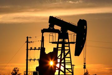 PGS, TS Đinh Trọng Thịnh: Giá dầu có tăng trở lại cũng không tác động nhiều đến CPI