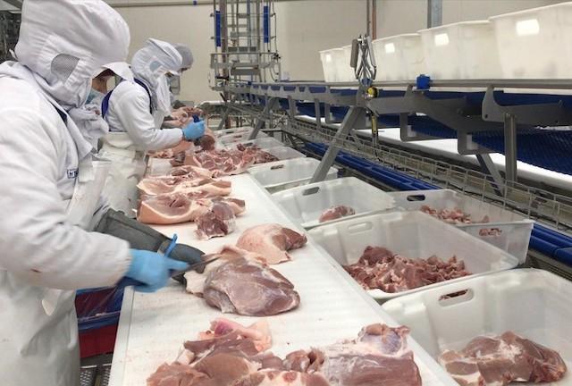 Lãnh đạo Bộ NN&PTNT cho biết sẽ thanh tra về giá thịt lợn tại một số DN Ảnh: Bình Phương.