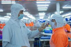 Kim ngạch xuất khẩu 2 tháng của Navico giảm 25%