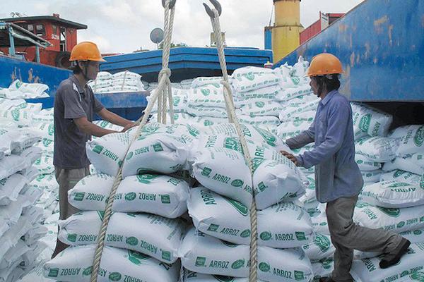 Hạn mặn chưa tác động đáng kể đến sản lượng lúa Đông Xuân của Việt Nam
