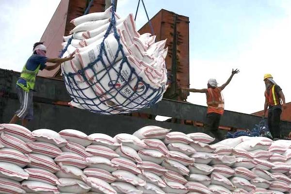 Các nước quan tâm thế nào đến gạo xuất khẩu của Việt Nam?