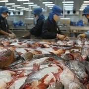 Nhóm cổ đông Thaco nắm giữ trên 35% cổ phần Hùng Vương