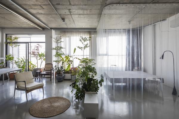 Căn hộ 75 m2 ở TP HCM sinh động với cây và sách