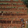 <p> Các công nhân đang đào huyệt để chôn những người tử vong vì dịch Covid-19 ở nghĩa trang Vila Formosa, Sao Paulo, Brazil vào ngày 1/4. Nghĩa trang lớn nhất châu Mỹ Latin này ghi nhận số người chôn ở đây tăng 30% kể từ khi dịch Covid-19 bùng phát. Brazil ghi nhận hơn 10.000 ca nhiễm bệnh, trong đó có 445 người đã tử vong. Ảnh: <em>AP</em>.</p>