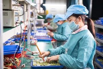 Rà soát tình hình sản xuất kinh doanh của doanh nghiệp trên cả nước