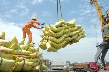 Thủ tướng đồng ý nối lại xuất khẩu gạo