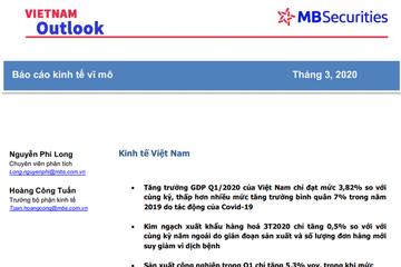 MBS: Triển vọng Việt Nam số tháng 3/2020