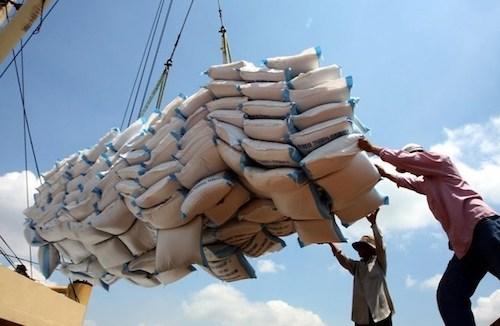 Hải quan: Không có sự can thiệp hạn ngạch xuất khẩu gạo
