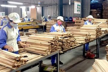 80% đơn hàng xuất khẩu gỗ bị tạm dừng