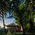 <p> Ngôi nhà hoà hợp với môi trường xung quanh - nơi bao quanh bởi rừng dừa nước, vốn là nét đặc trưng bản địa của khu vực này.</p>