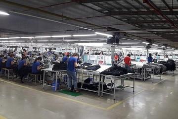 TNG lãi quý I giảm 10%, khách hàng dãn tiến độ giao hàng