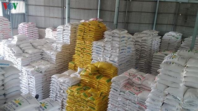 Nghịch lý giá lúa tăng, giá gạo 'nằm một chỗ'