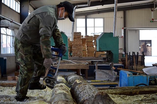 Công nhân cưa gỗ trong nhà máy ở Tuy Phân Hà, thành phố biên giới Trung - Nga, hôm 15/4. Ảnh: Reuters.