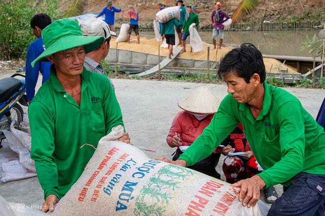 Nông dân xã Thạnh An, huyện Vĩnh Thạnh, TP Cần Thơ thu hoạch lúa vụ Đông Xuân đầu tháng 3/2020.