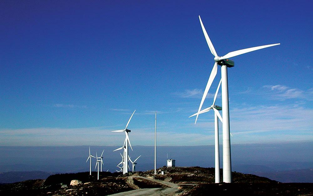 Đề xuất gia hạn cơ chế giá mua điện cố định cho điện gió