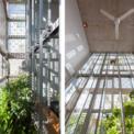 <p> Với 2 lớp tường bảo vệ, cùng cây xanh ở giữa, ngôi nhà có thể tránh được nắng nóng và tiếng ồn.</p>