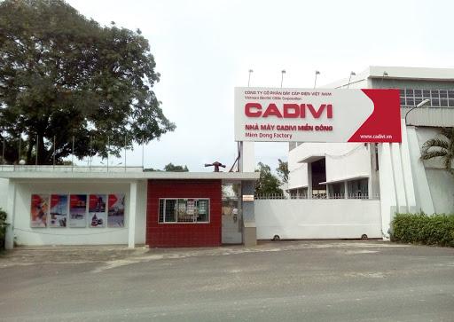 Cadivi chốt ngày trả cổ tức năm 2019 tỷ lệ 50% bằng tiền