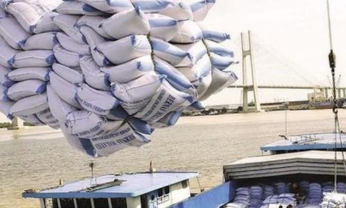 Thường trực UBKT đánh giá thị trường gạo đang sôi động, giá gạo đang tăng.