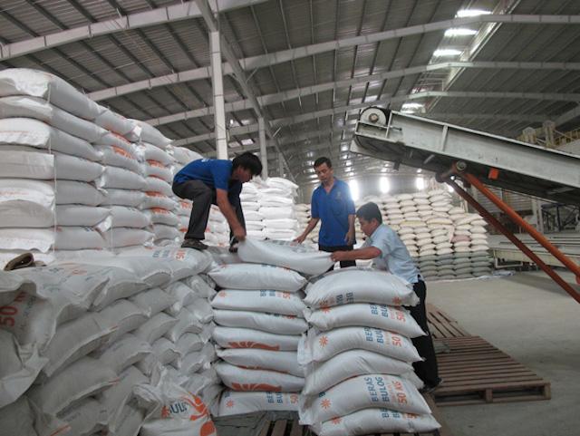 Lượng tồn kho trong các doanh nghiệp là rất lớn trong khi vụ hè thu chuẩn bị thu hoạch, các doanh nghiệp đề nghị sớm mở cửa thị trường xuất khẩu gạo tự do trở lại.
