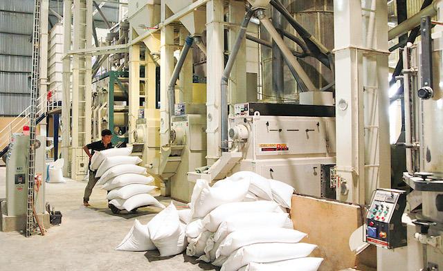 Mở tờ khai hải quan xuất khẩu gạo nếp từ hôm nay