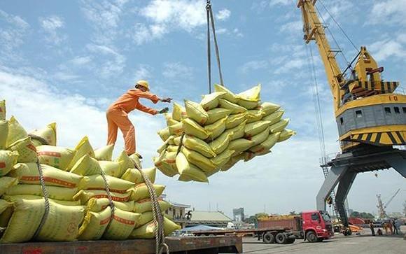 Hải quan hỏa tốc thông báo mở hệ thống đăng ký tờ khai gạo tồn tại cảng