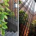 <p> Không gian xanh trong ngôi nhà, nơi đem lại ánh sáng và không khí chan hòa cho người thuê.</p>