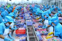 VASEP: 4 khó khăn bủa vây doanh nghiệp thuỷ sản