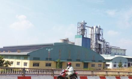 Dự án nhà máy giấy Phương Nam bán không ai mua
