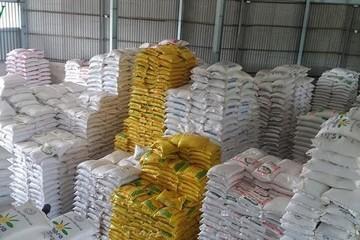 Vụ mua gạo dự trữ: Đang làm rõ có hay không việc thông đồng, móc ngoặc