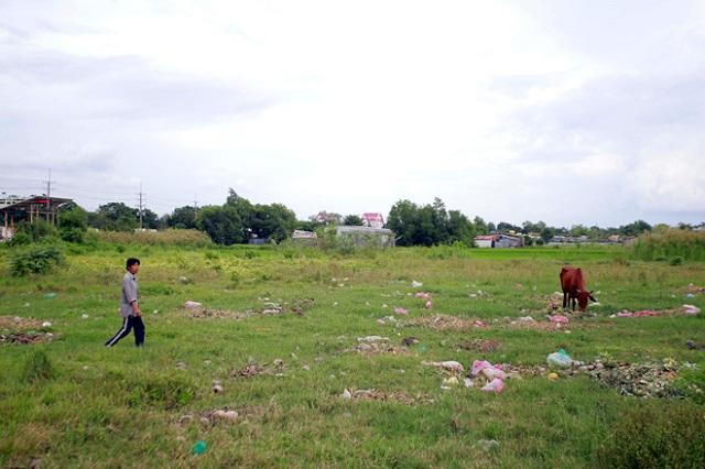 Thu hồi dự án để đất hoang