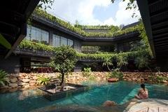 Biến toàn bộ khoảng sân thành bể bơi, ngôi nhà như khu rừng nhiệt đới thu hút cả ong bướm