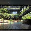 <p> Theo kế hoạch, ngôi nhà là một ốc đảo xanh giữa khu phố, nơi các tầng cảnh quan và mái nhà trồng cây xếp tầng đóng khung hồ bơi.</p>